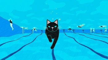 Cats In The Pool